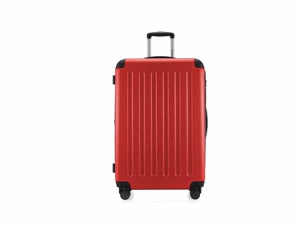 analisis de la maleta Hauptstadtkoffer Spree